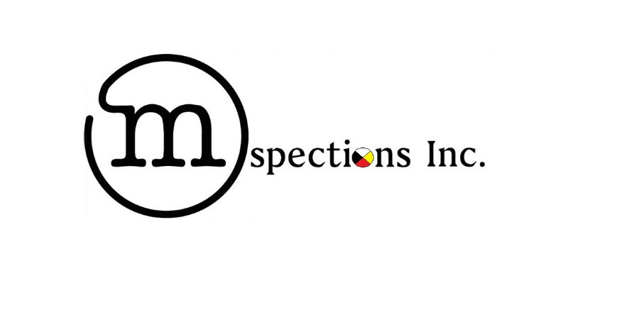 Mspections Inc