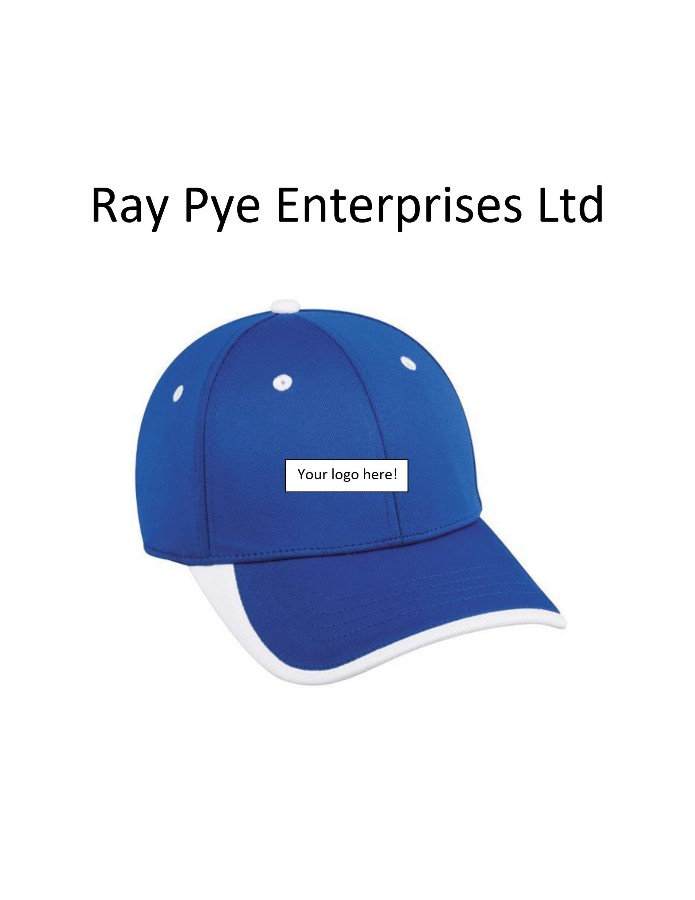 Ray Pye Enterprises Ltd