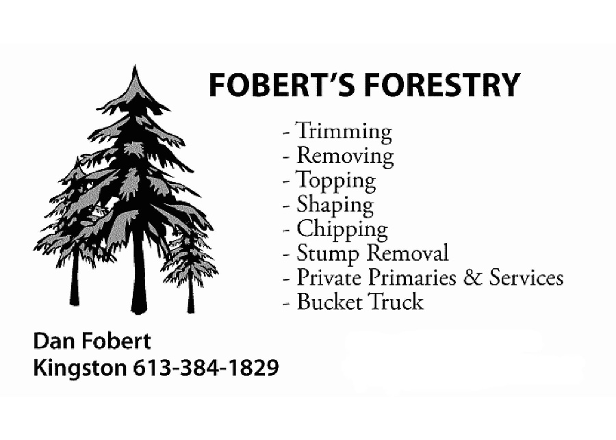 Foberts Forestry